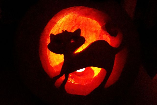 Halloween cat from Poland. User Silar.