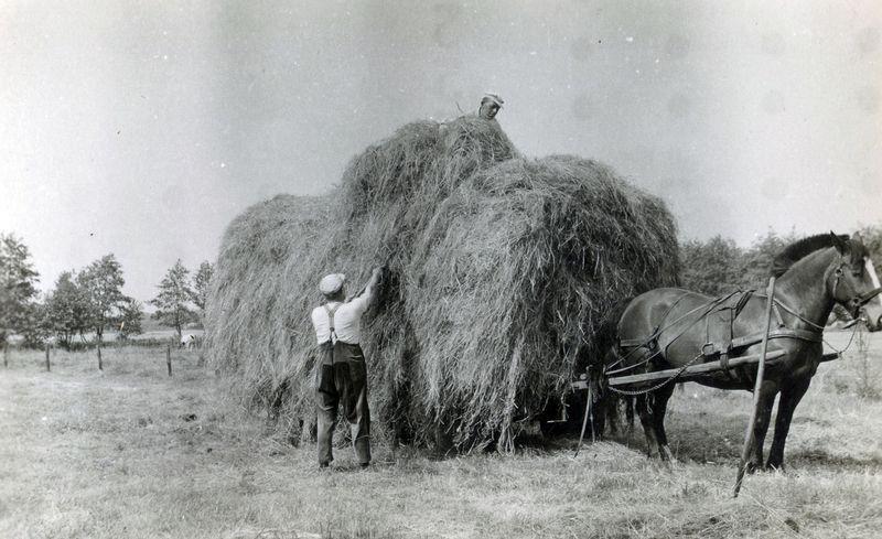 Life in Vragender in 1949